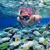 Splendid Andaman Island Tour