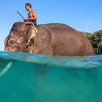 Stay = 2 Nights (Port Blair), 2 Nights (Havelock) Tour