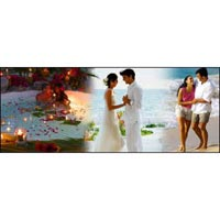 Shimla-Manali Honeymoon package 05Night