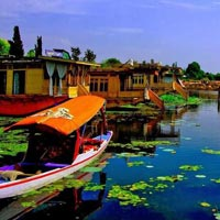 Paradise At Srinagar Tour