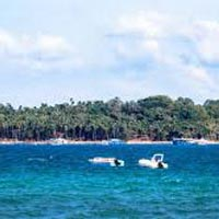 Exciting Tour for Havelock Island
