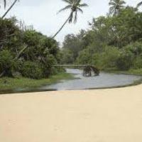 Group Tour for Goa