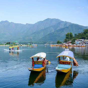 10N11D- Day Trips From Srinagar Tour
