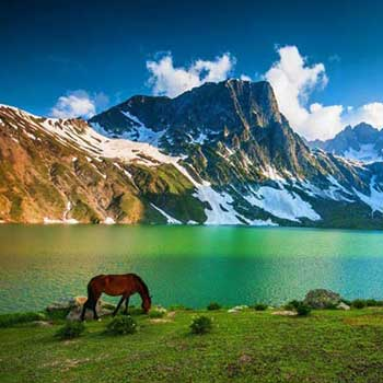 10N11D- Exotic Kashmir Package