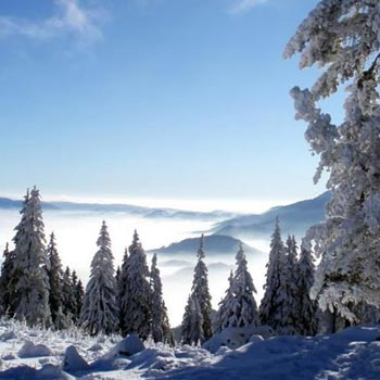 Shimla Manali  9Day Tour