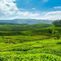 Kerala Hill Station Tour