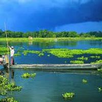 Assam Wildlife & Heritage Tour