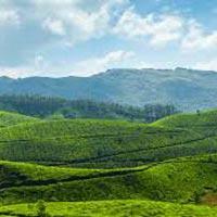 Kerala Voyage Tour