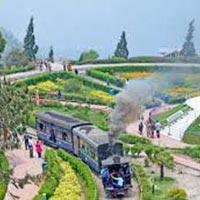 Amazing Darjeeling Tour