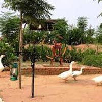 1 Day Tour To Lohagarh Farms, Gurgaon With Breakfast, Lunch & Dlx Bus