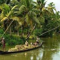 Reasonable Experience In Kerala