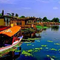 Jammu and Srinagar Tour