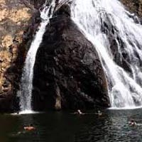 Dudhsagar Waterfalls Day Trip In Goa Tour