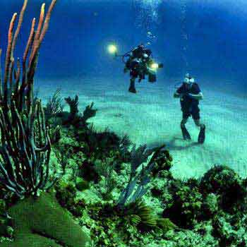 Marine Scuba Diving In Goa Trip Tour
