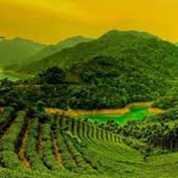 Grandeur of Kerala Tour