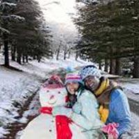 Romantic tour of Shimla & Manali Tour