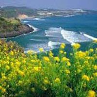 South Korea - Culturally Rich Seoul & Jeju Island Tour