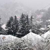 Beautiful Shimla Tour 2* Package