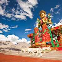 Romantic Ladakh Package