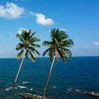 Andaman Tour Two Day Tour