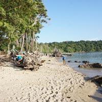 Andaman Tour Three Day Tour