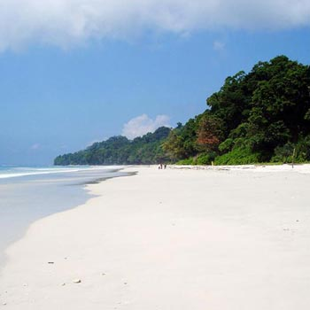 Splendid Andaman Tour