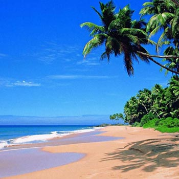 Goa exciting package for 3 N