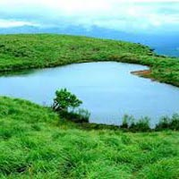 Hill Stations of South India Tour