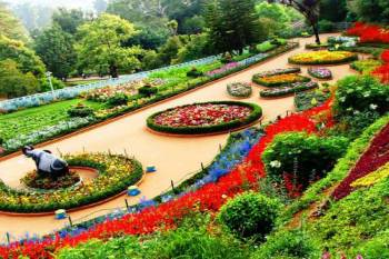 Ooty - Mysore - Coorg Tour 5 Nights and 6 Days Tour