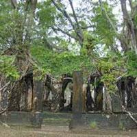 6Nights/7Days Andaman Tour