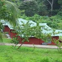 Exotic Andaman Island Tour