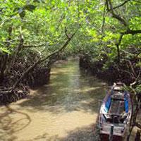 Andaman Honeymoon Tour Package 6N/7D