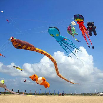 Kite Festival Tour 03N & 04D