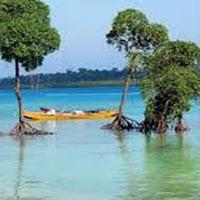 Explore Andaman & Nicobar Island 06N & 07D Tour
