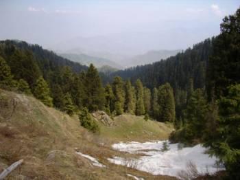 Shimla - Manali -dharamshala - Dalhousie - Delhi Tour
