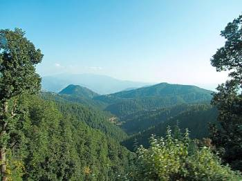 Delhi – Shimla - Kufri Tour