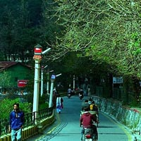 Delhi - Nainital - Delhi Tour