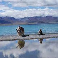 Moon Light Ladakh Tour