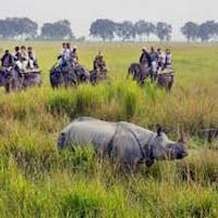 The Rhino Land (Kaziranga 2N - Guwahati 1N) Tour