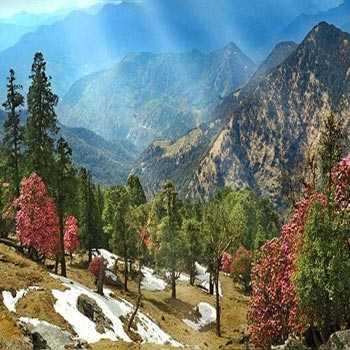 Ultimate Uttarakhand Tour - 6 Night 7 Days ( By Jigyasa Holidays)