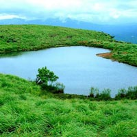 3 Days Wayanad Tour with Vythiri Treehouse