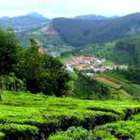 Bangalore Ooty Mysore Package