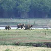 Short Escape to Kabini
