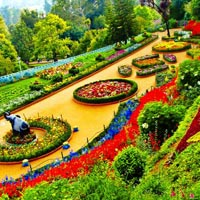 Short Escape to Ooty Tour