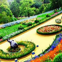 Ooty Hill Tour Package