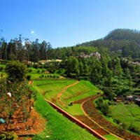 Bangalore with South India Hill stations Tour
