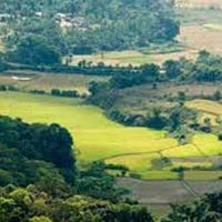 Bangalore with Ooty and Coorg Hills Tour