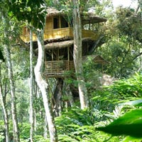 3 Days Periyar Tour with Treehouse