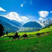 Kashmir - E - Kashmir Tour