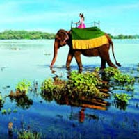 Best of Sri Lanka 7 Days / 6 Nights Tour